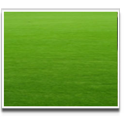 image of Kerry Green grass